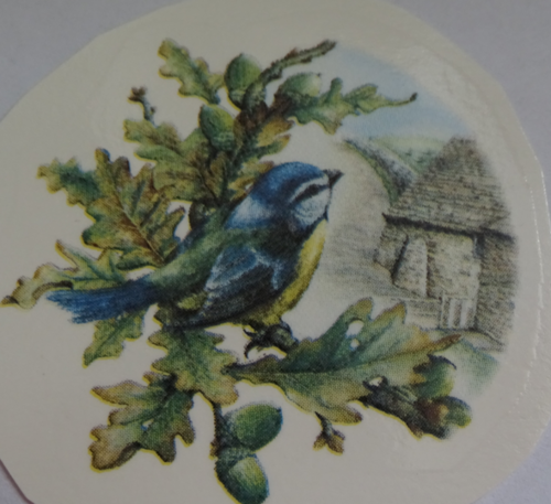 Blue Tit Decal